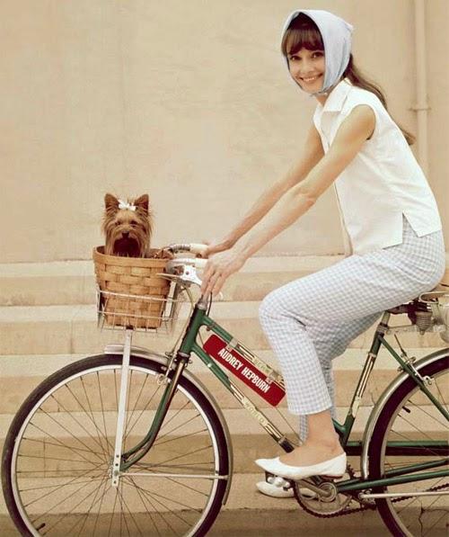 Đạp xe và những tác dụng tuyệt vời không thể bỏ qua